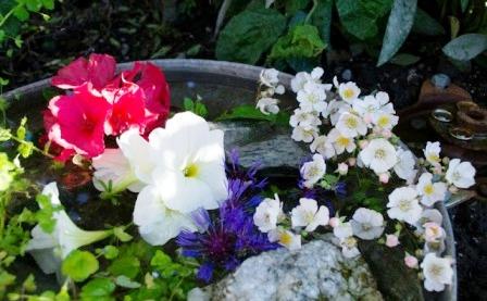 Идеи для маленького сада (6)