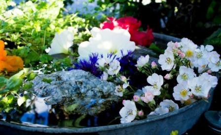 Идеи для маленького сада (8)