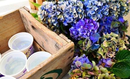 Из чего можно сделать цветочный горшок (6)