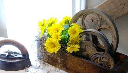 Из чего можно сделать цветочный горшок (7)