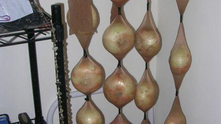 Где хранить лук (3)