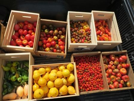 Как хранить урожай (1)