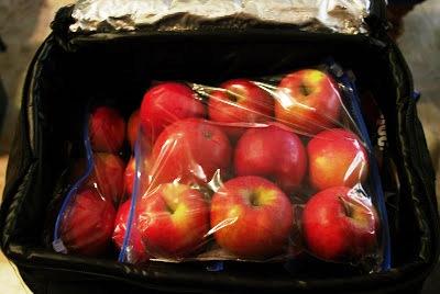 Как хранить яблоки (5)