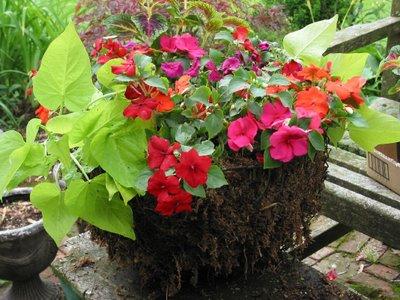 подвесное кашпо для цветов