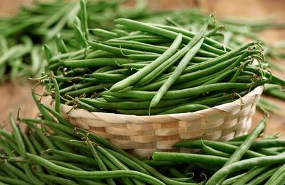 как выращивать фасоль