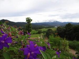 Фото сказочного домика в горах (2)