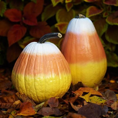 Украшение на Хэллоуин - что сделать из тыквы (2)