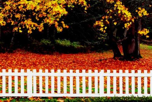 Как сделать забор - поделки для дачи (4)