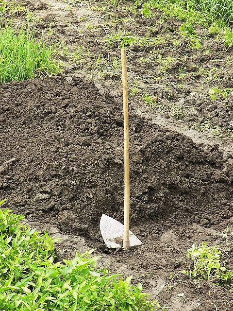 Инструменты для сада - инструменты садовода (3)