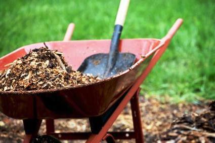 Мульчирование почвы - что такое мульча (4)