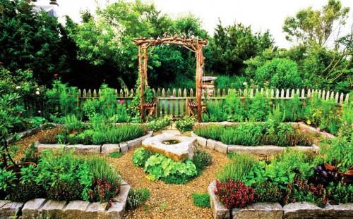 Советы дачникам - наш сад и огород (2)