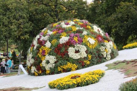 Создание цветников - цветник своими руками (10)