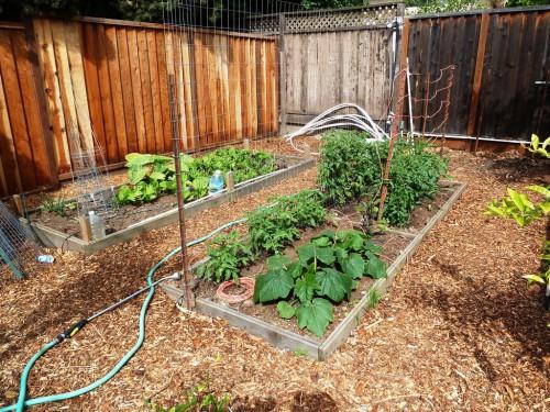 Украшение садового участка своими руками - оформление дачи своими руками (1)