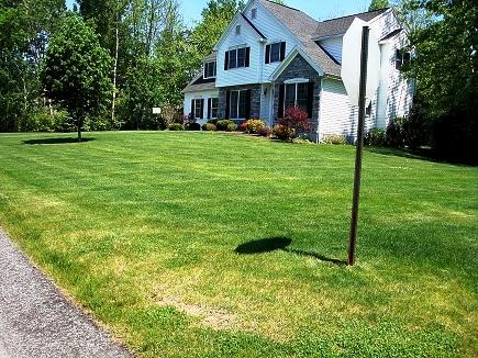 Уход за газоном - стрижка газона (1)