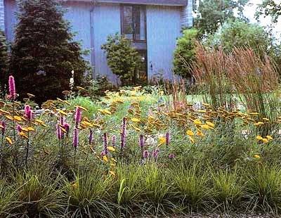 Палисадник своими руками - фото как украсить сад  (19)