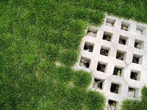 Решетка для газона (2)
