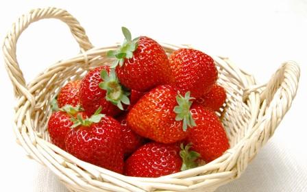 Выращивание земляники дома - посадка земляники садовой (4)