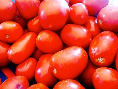 Выращивание овощей в теплицах - как вырастить капусту и помидоры (10)