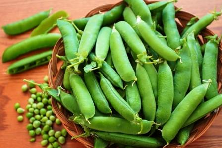 Полезные свойства гороха - выращивание гороха (4)