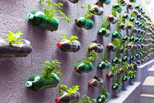 Как сделать оранжерею - поделки для дачи из пластиковых бутылок (3)