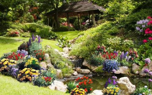 Рабатка - фото цветников (6)