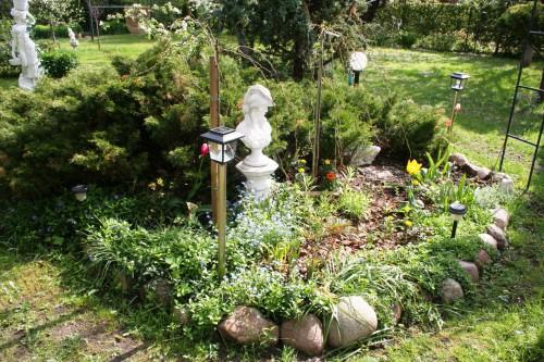 Рабатка - фото цветников (9)