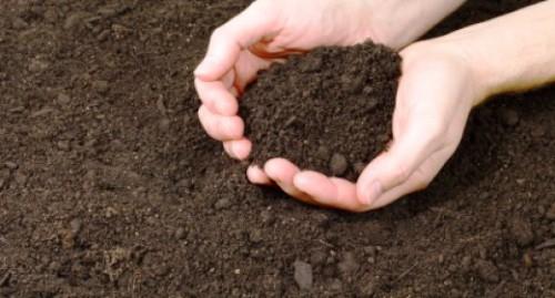 Состав почвы - определение PH почвы (1)