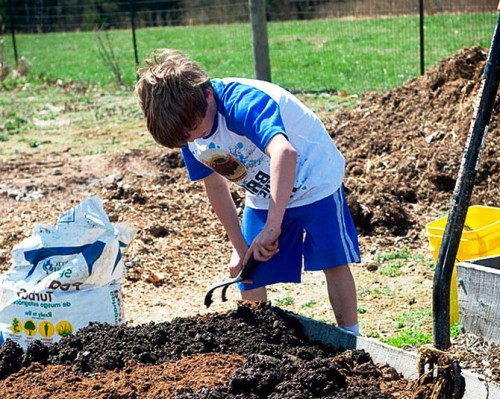 Состав почвы - определение PH почвы (3)
