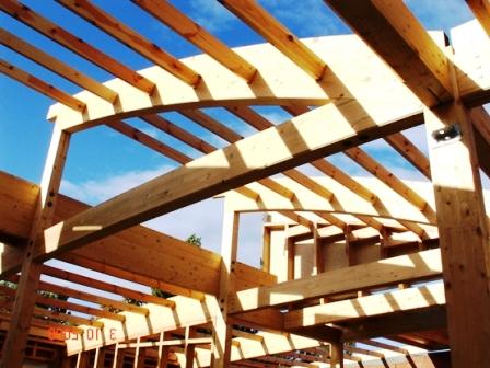 Как быстро построить дом (3)