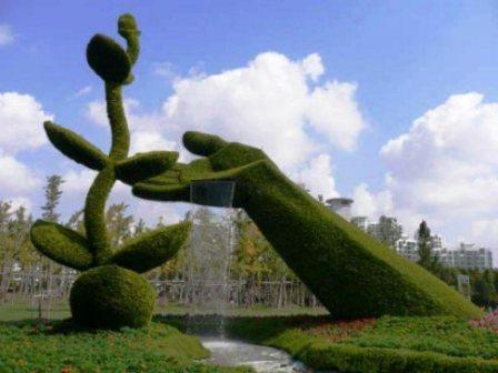 Топиарное искусство - виды растений и фото (44)