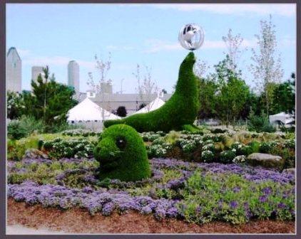 Топиарное искусство - виды растений и фото (46)