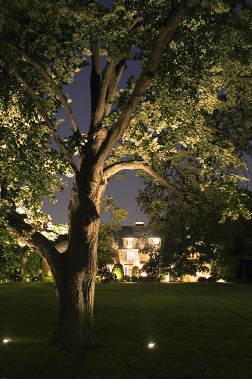 Как сделать освещение - в саду - фото (12)