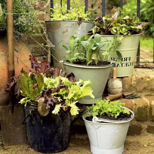 Оформление садов - винтажный стиль (9)
