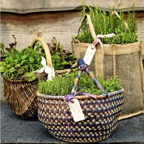 Оформление садов - винтажный стиль (11)