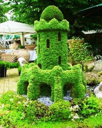 Топиарное искусство - виды растений и фото (2)