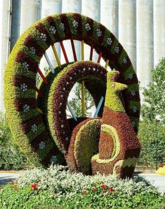 Топиарное искусство - виды растений и фото (16)