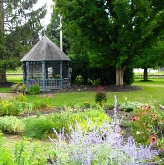 Сад для взрослых и детей (4)