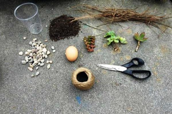 Горшок из яичной скорлупы (2)
