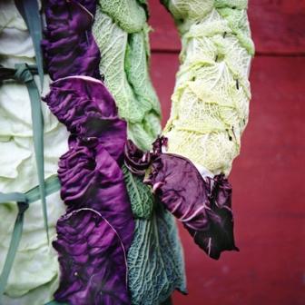 Одежда из растений для декора участка (11)