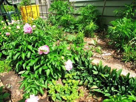 Интересные идеи для сада своими руками (24)