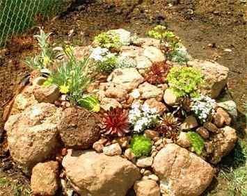 Камень для сада (5)
