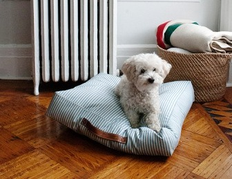 Лежанка для собаки своими руками (1)