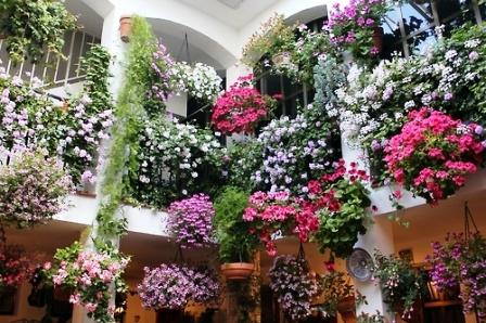 Как подобрать цветы (2)
