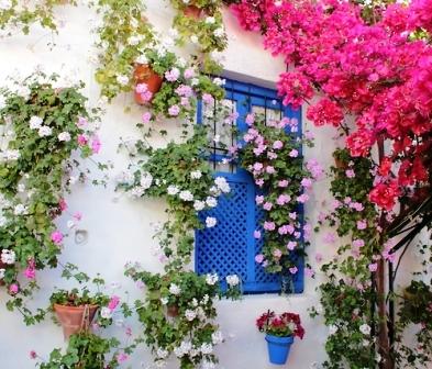 Как подобрать цветы (3)