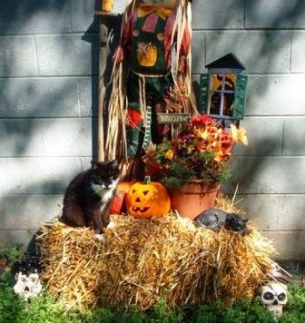Декор на Хэллоуин (53)